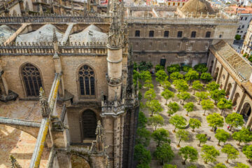 views of Sevilla from the cathedral belltower