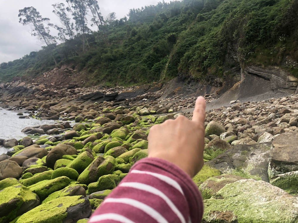 finger pointing at the ichnofossils location in the beach